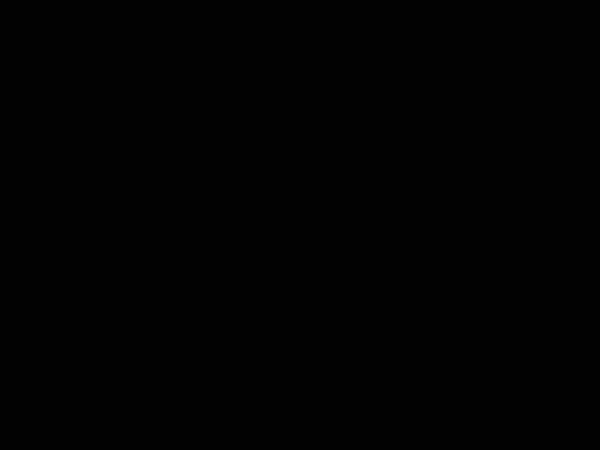 BLACK - Coordinating Solids