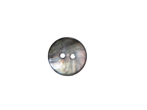 Two Hole Abalone Shell Button 5/8in